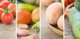 alimenti - mythja- Shutterstock.com